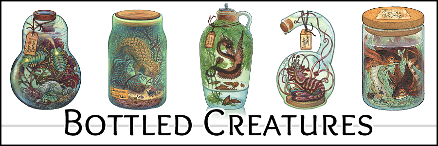 """Bottled Creatures"" painting series link"